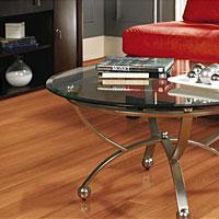 Laminate flooring formica laminate flooring distributors for Kronotex laminate flooring distributors